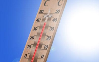Hitzewelle: Frühzeitig an den nächsten Sommer denken!