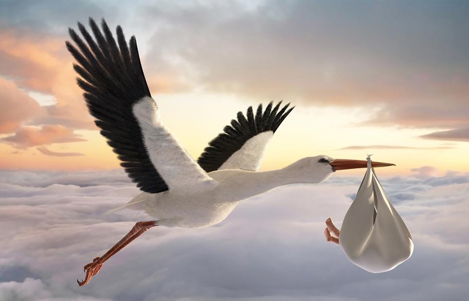 Fliegender Storch bringt Baby